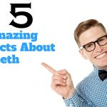 15 Facts About Teeth