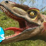 12 Interesting Facts about Dinosaurs