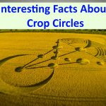 5 Interesting Facts About Crop Circles