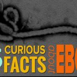 15 Interesting Mind Blowing Ebola Facts