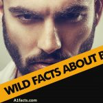 14 Interesting Facts About Beards
