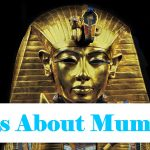 10 Intriguing Facts About Mummies