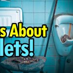 12 Interesting Facts About Toilets